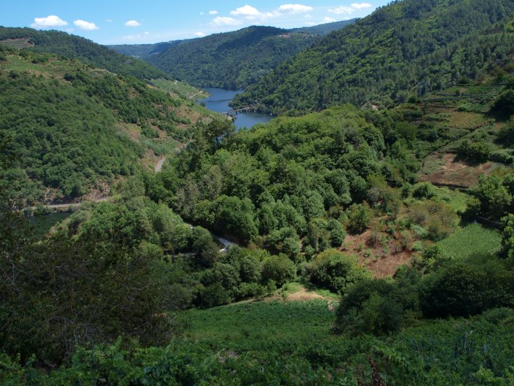 Rzeka Sil, Chantada