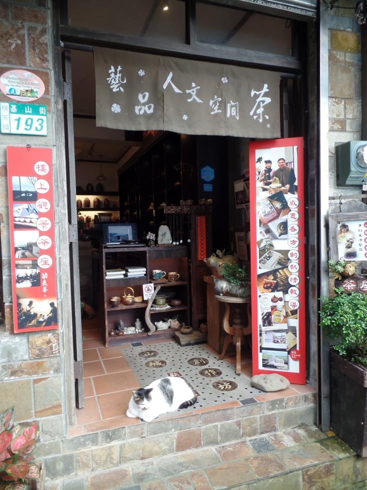 Koty w Jiufenie