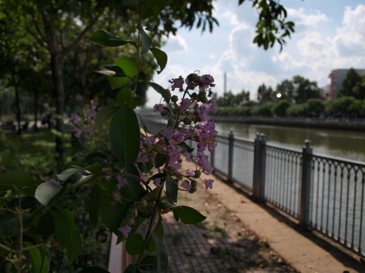 Rzeka Sajgon