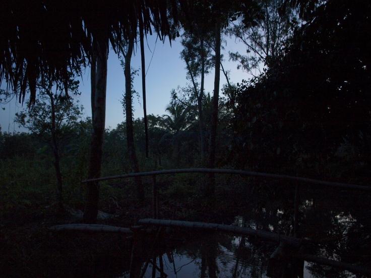 Świt w delcie Mekongu