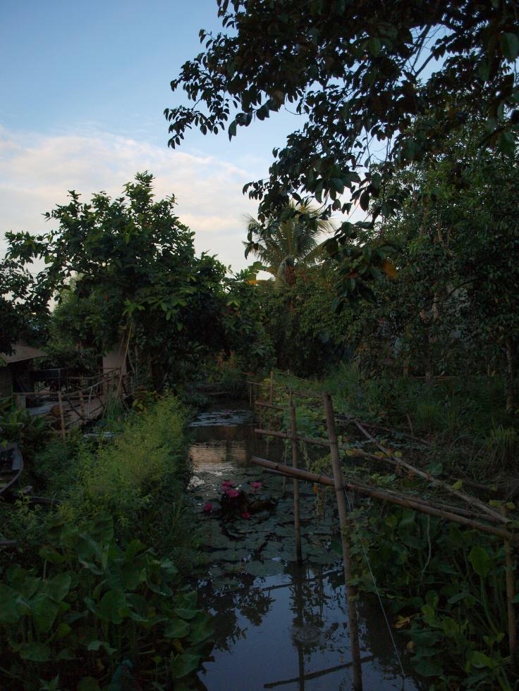 Delta Mekongu o poranku