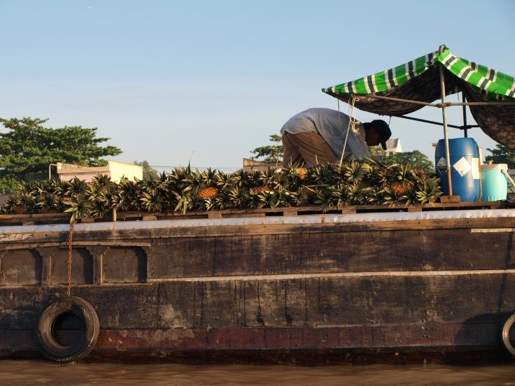 Targ Cai Rang, delta Mekongu